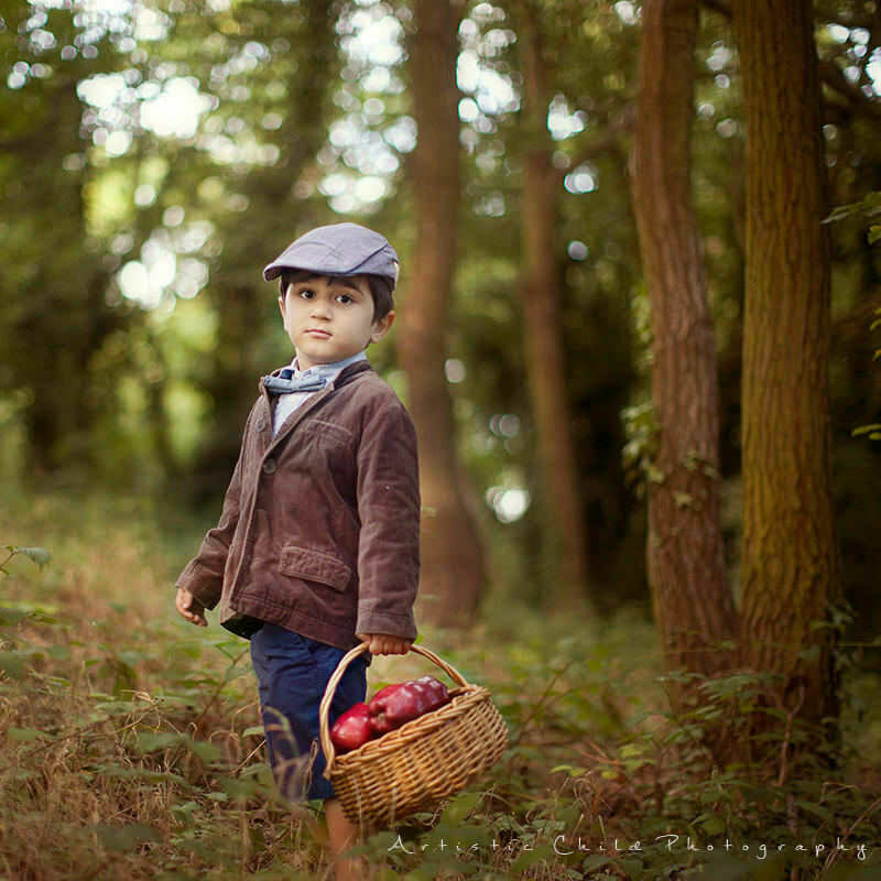London Kids Images | portrait of 3 years old boy with basket full of red apples