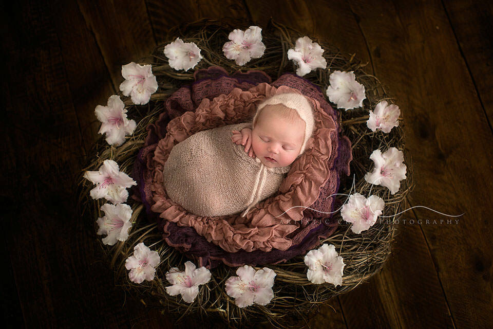 Best London Newborn Photos | newborn baby girl sleeping in a nest surrounded by flowers