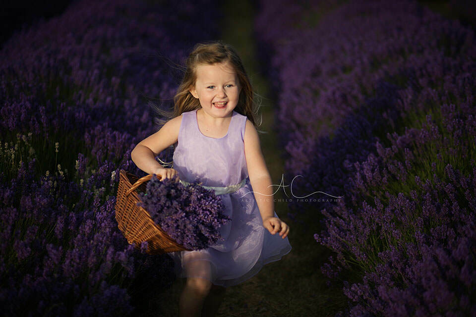 4 year old girl running through lavender field with wicker basket full of lavender bunches | South London