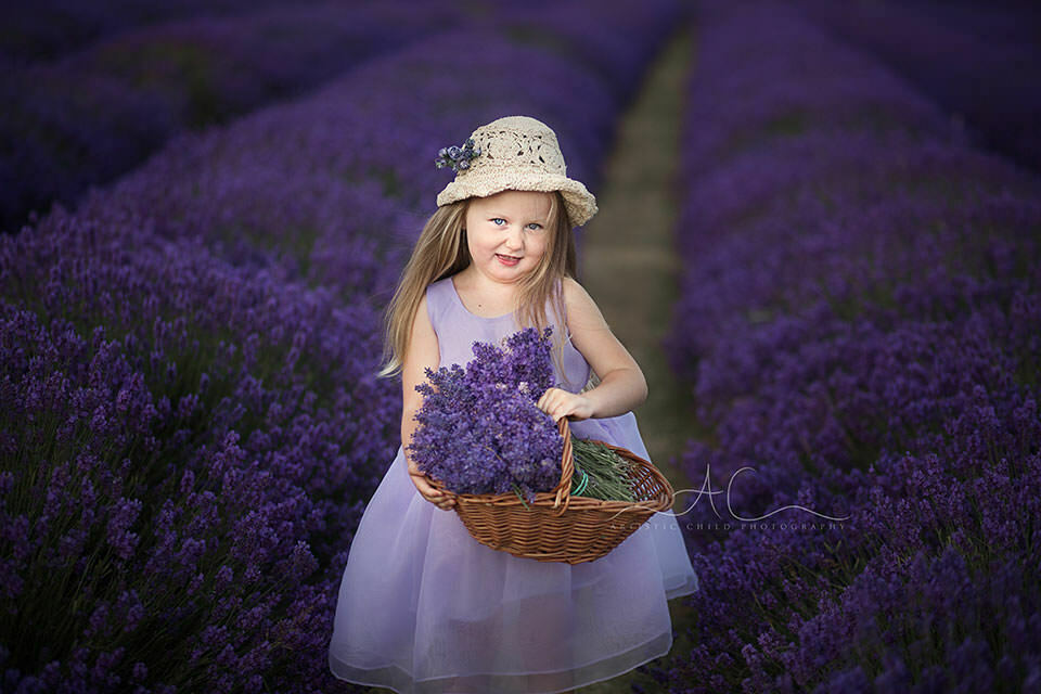 portrait of 4 year old girl in Lavender Field | South London