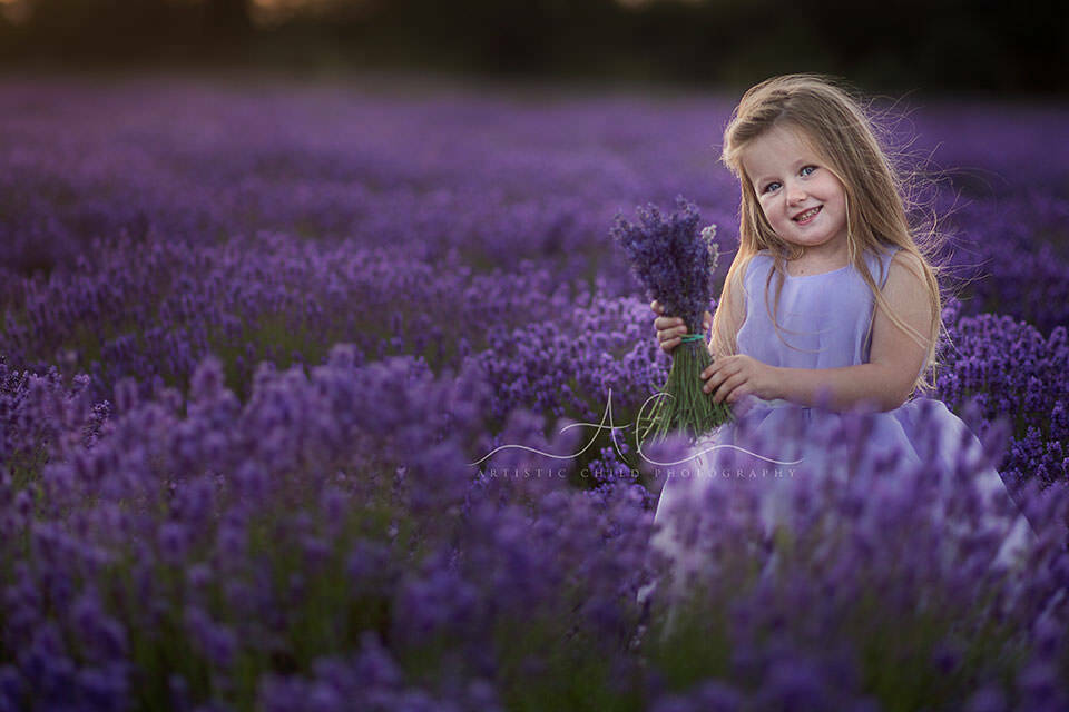 London children photo session in Lavender Field | backlit portrait of a girl holding a bunch of lavender flowers
