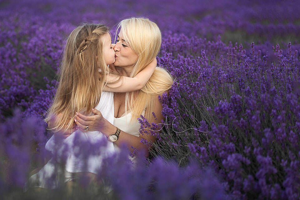 London family photo session in Lavender Field | mum and daughter kiss in Lavender Field