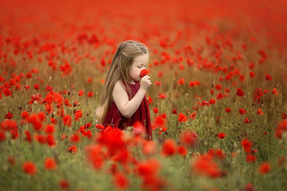 Beautiful London Children Photos | 5 year old girl walking through poppy field and smelling the flower