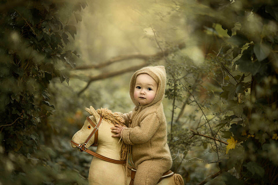 Professional London Toddler Pictures   portrait of 1 year old boy  on a rocking horse taken in the park