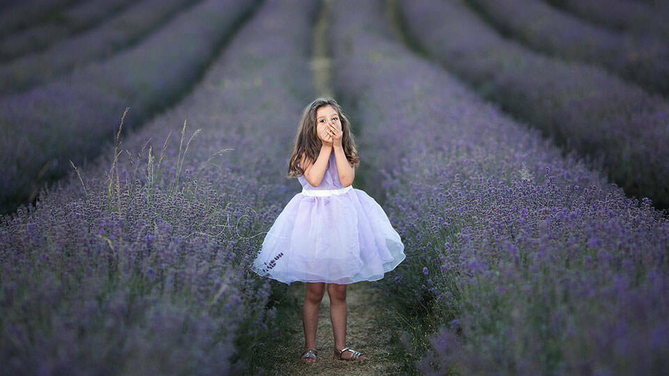 London Children Images | portrait of 5 year old girl standing in the middle of a Lavender Field