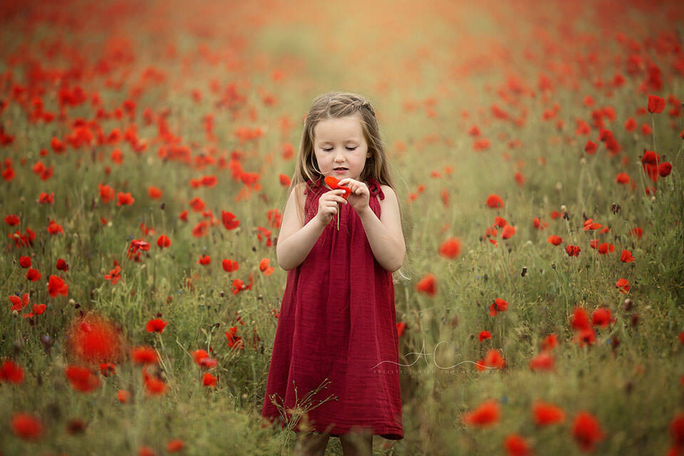 5 year old girl counting a poppy flower petals while standing in the middle of a poppy field