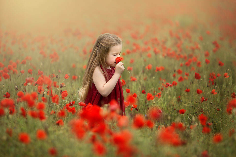 Best London Kids Pictures | 5 year old girl smelling a poppy flower while walking across a poppy field