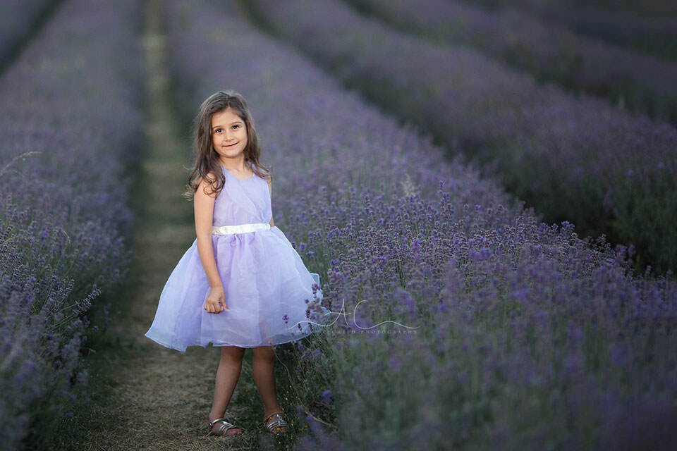 5 year old wearing a lavender colour dress in lavender field | London