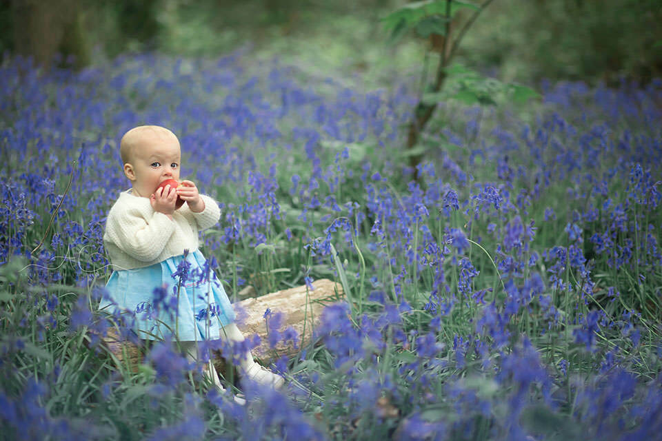 1 year old baby girl eating a red apple while sitting on a wooden log surrounded by bluebells
