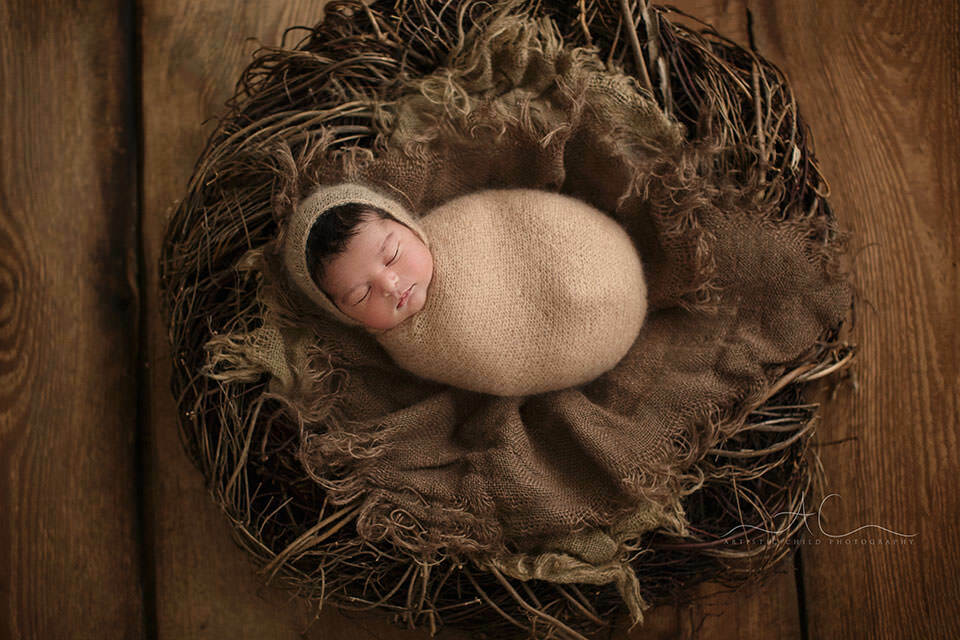 professional portrait of a newborn baby girl sleeping in a nest prop during the newbonr photo session   London