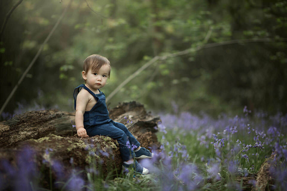 photo of a toddler boy who sits on a wooden log surrounded by bluebells | London