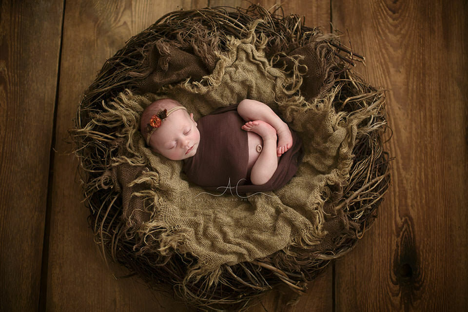 portrait of a newborn baby girl sleeping in a nest prop during her professional photo session in London - Bromley studio