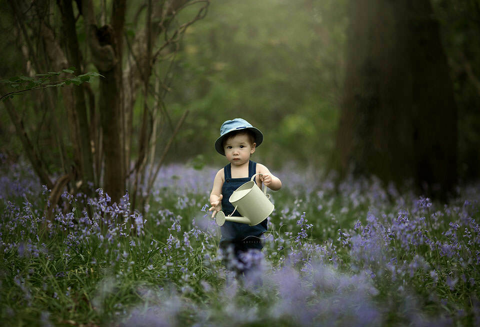 Bluebells London Toddler Photography | toddler boy waters bluebells with a watering can