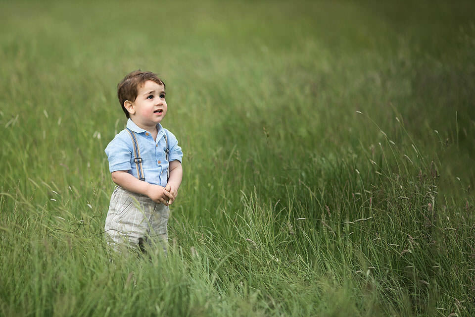 portrait of a toddler boy in a long green grass | London