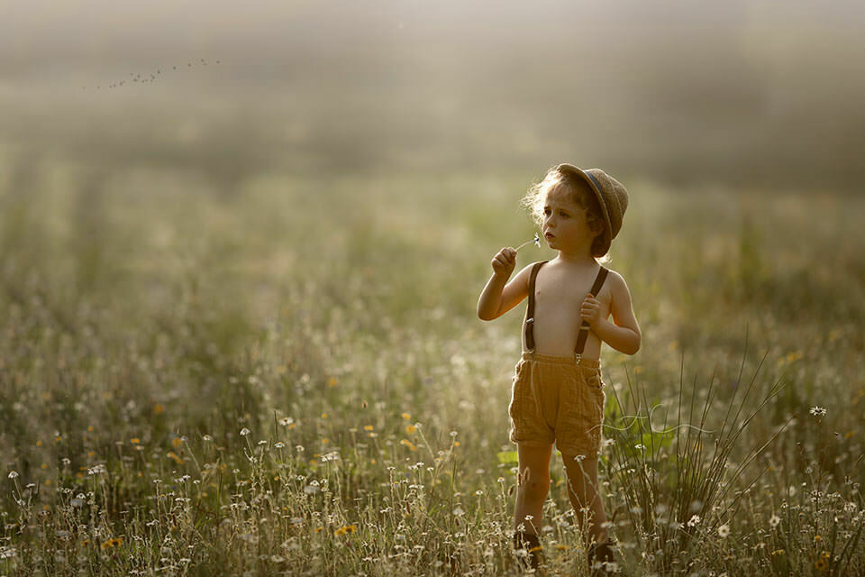 Beautiful London Child Photography in Wildlower Field | 4 year old boy smells a wildflower