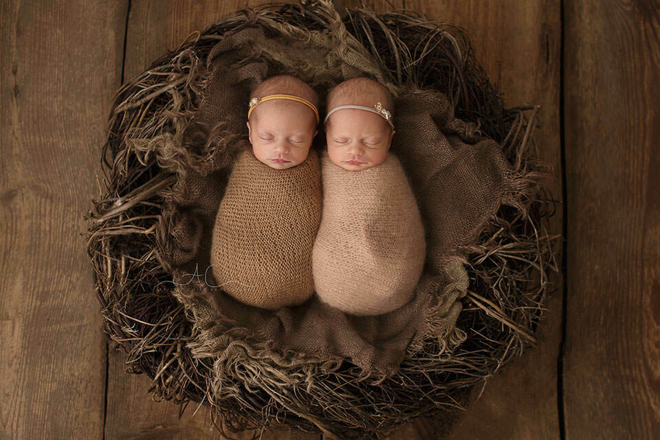 London Newborn Twin girls Photo Session | portrait of swaddled newborn twin girls in the nest posing prop