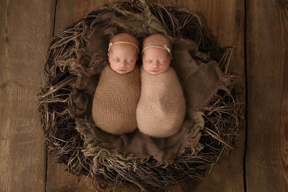 London Newborn Twin girls Photo Session | portrait of swaddled newborn twin girls in the nest posing prop