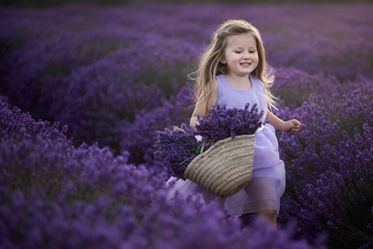 Mini Photography Sessions in Lavender Field | 4 year old girl runs through lavernder field with a basket full of lavender flowers