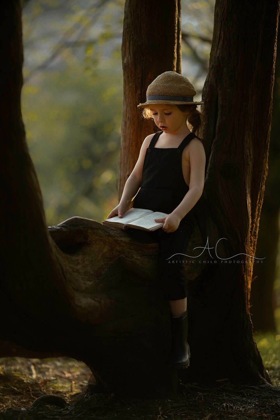 Professional London Children Photos | 4 year old boy with a hat reads a book while sitting on a tree