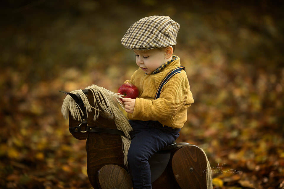 photo of 15 months old boy playing with rocking horse during an autumnal photoshoot in South East London