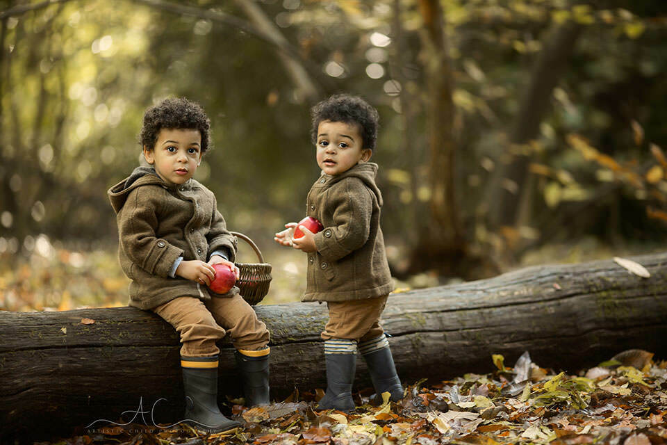 borthers playing on a tree log with red apples | Bromley