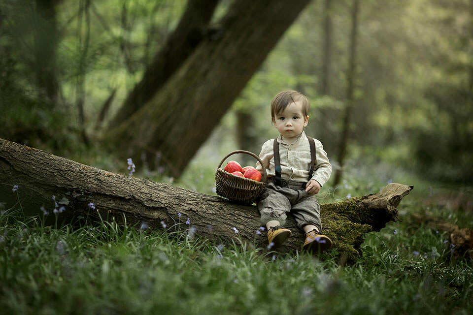 1 year old boy sits on a tree log with a wicker basket full of red apples | London