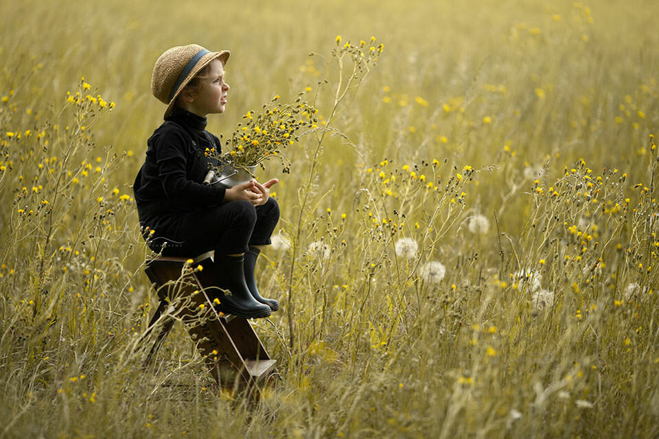 Summertime London Children Photo Session | 4 year old boy gazes away while sitting on the leather steps in the middle of a wildflower field